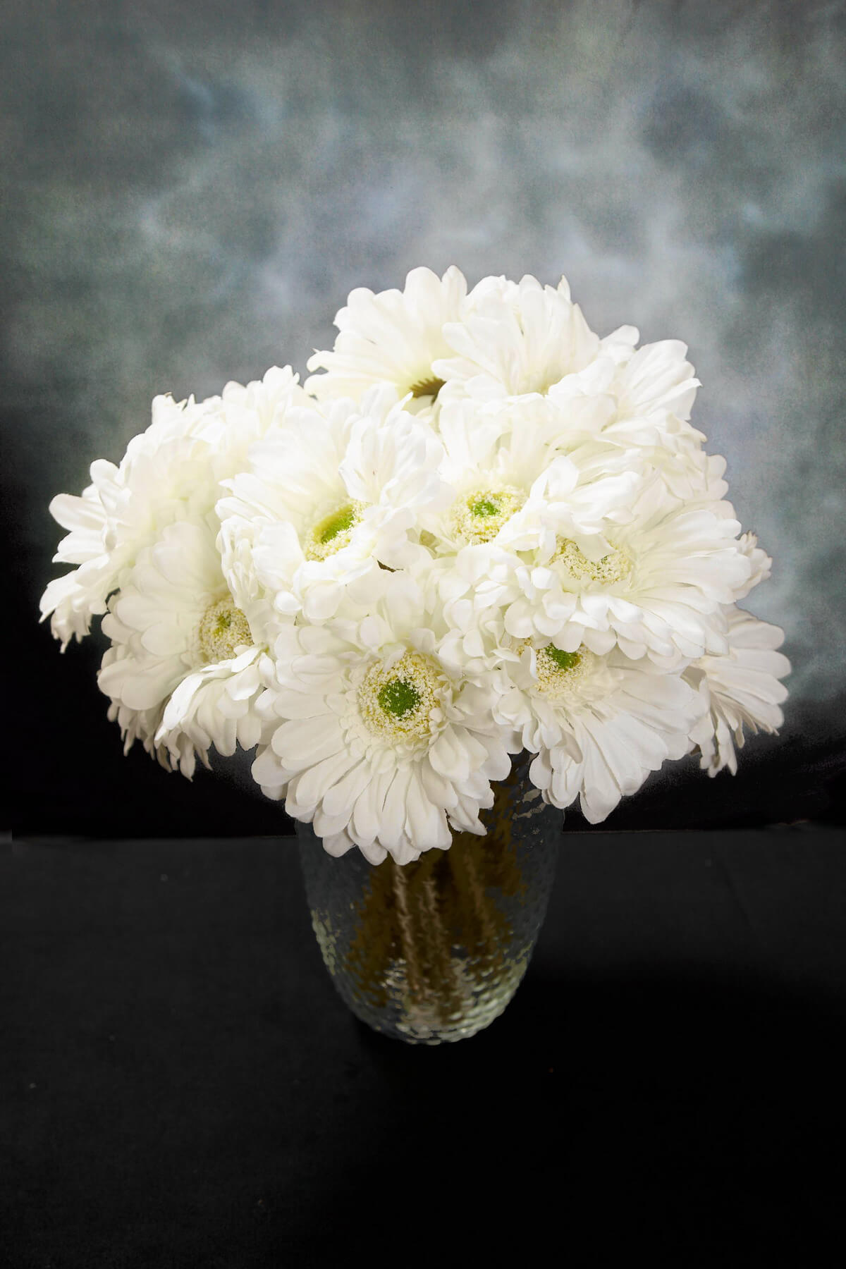 24 Cream White Gerbera Daisy Flowers 9