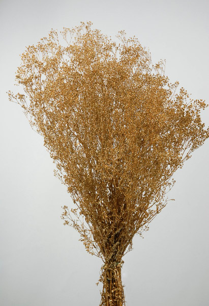 Gold Babys Breath Branches 4oz Bunch 26in