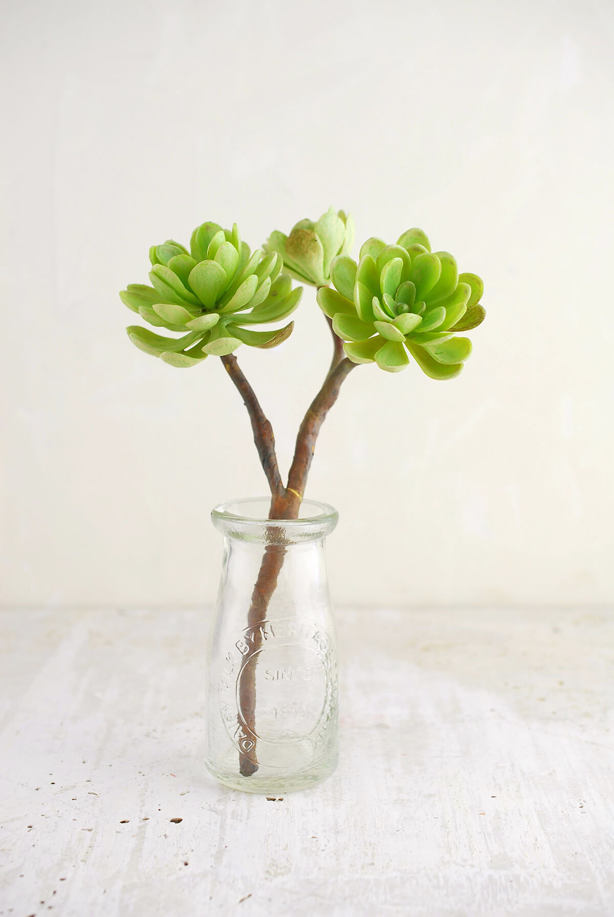 Hen and Chicks Faux Succulent Stem Green 10in