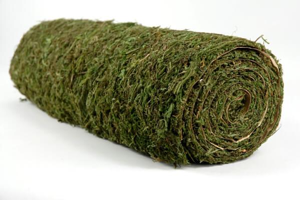 Sheet Moss Roll 4 x 24