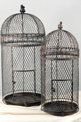 Large Vintage Pigeon Bird Cages 30  25