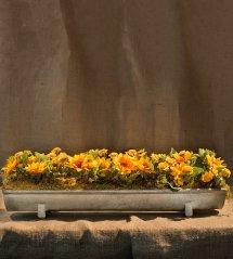 Zinc Feeding Trough Planter Tray With Legs 24