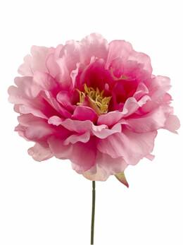 Pink Silk Peony 6 wide Flower Heads Bouquet of 24
