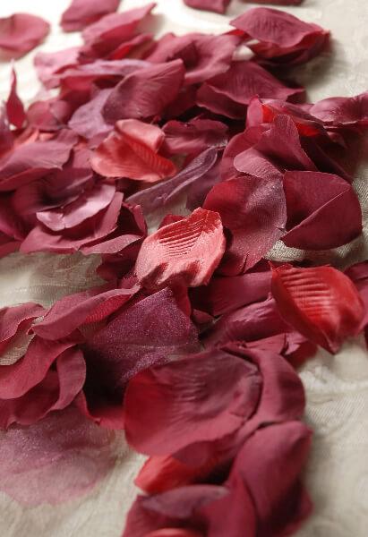 Silk Rose Petals 100 Burgundy Red