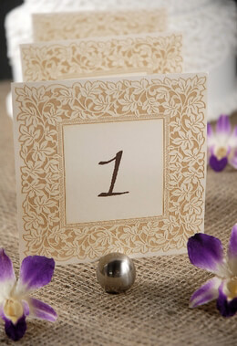 Clara Laser Engraved Table Numbers 110 Ivory  Gold 55in