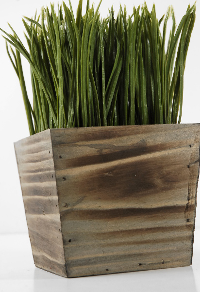 Wood Planter Box Grass Display 7in