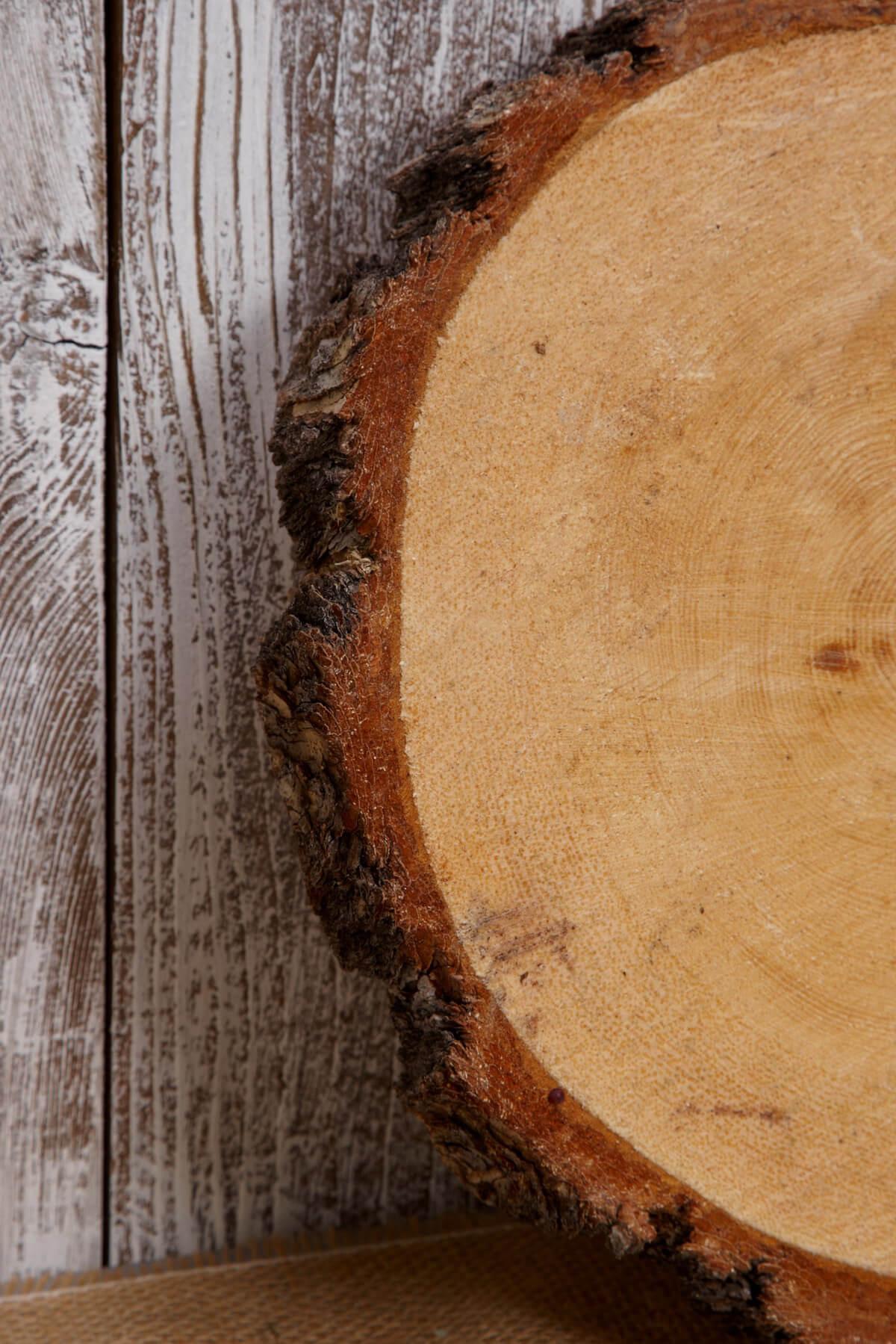 Tree Slabs Round Natural Wood 9 14