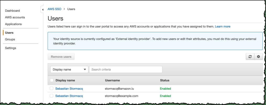 AWS SSO User View