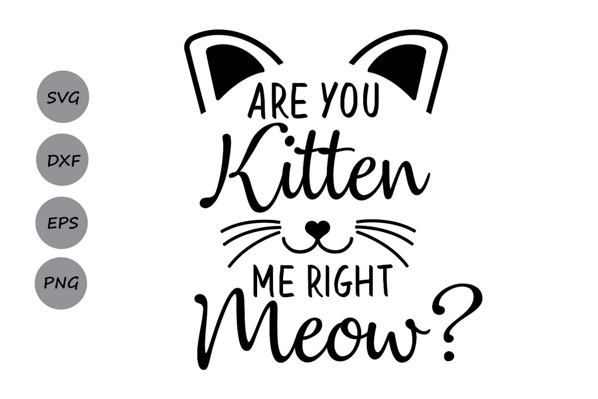 Are You Kitten Me Right Meow Svg Cat