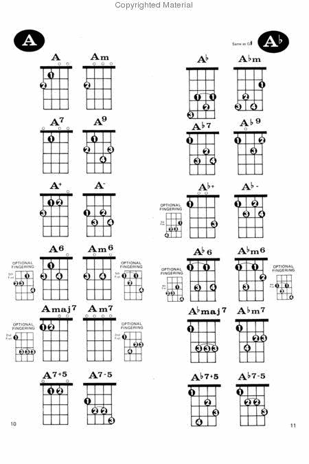 Ukulele Chord Dictionary Reference Book (AP.423) From