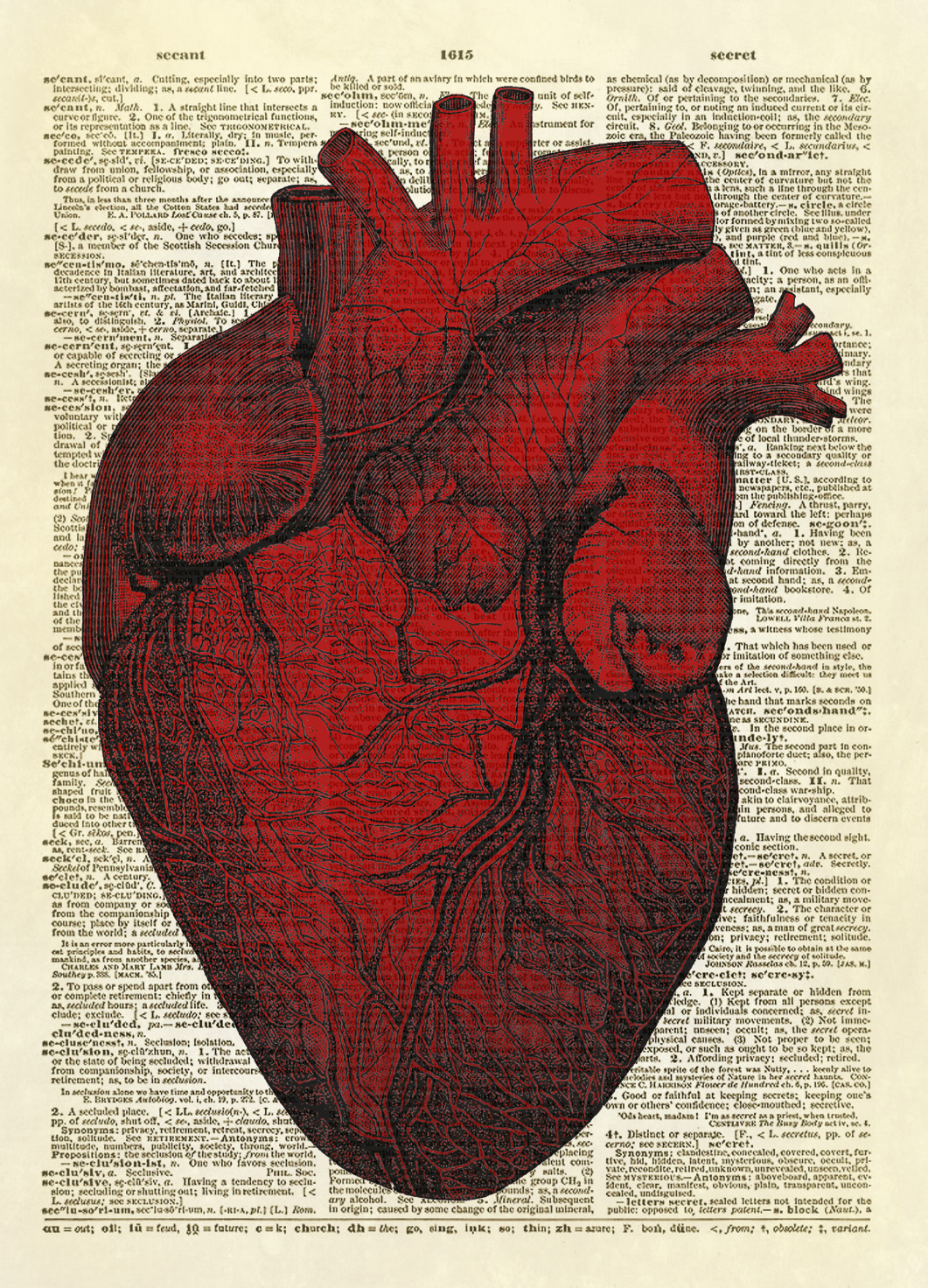 vintage red real heart diagram class 5 switch human dictionary art print no 0008 on storenvy