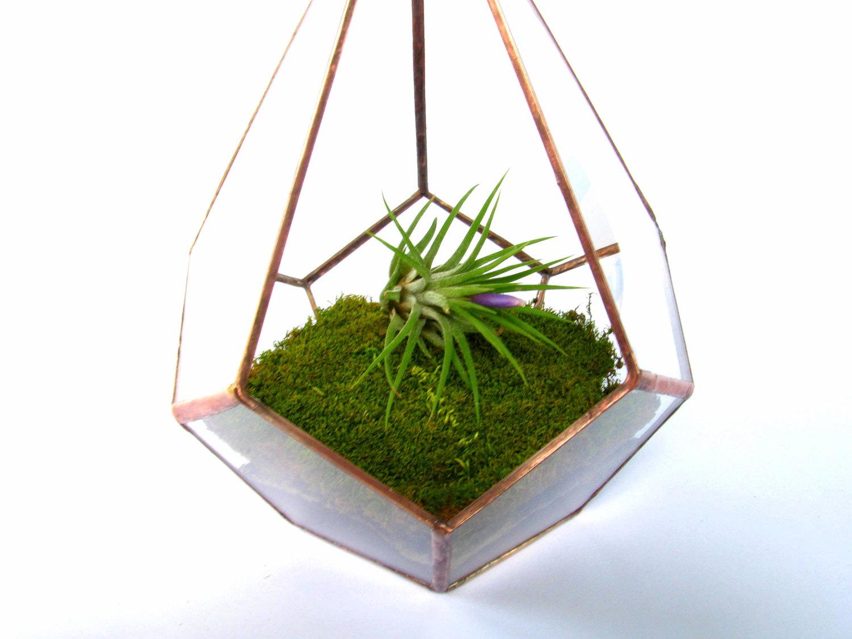 Hanging Terrarium  Copper Teardrop Terrarium  Glass