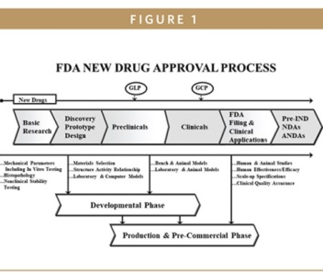 Drug Approval Process – Home Garden And Kitchen✓