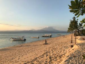 Leuke weetjes over Indonesi  Indonesi Reisblog