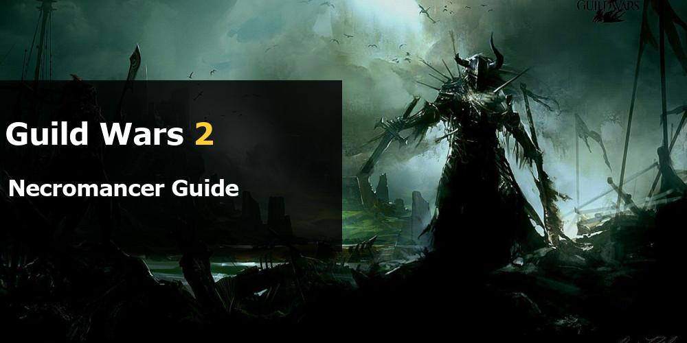 guild wars 2 has