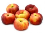 Tellernektarine (in Sorten), Stamm 40-60 cm, 100-150 cm, Prunus persica var. nucipersica (in Sorten), Containerware