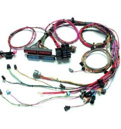 painless wiring 60509 99 02 gm ls1 fuel inj wiring harness [ 1600 x 1600 Pixel ]