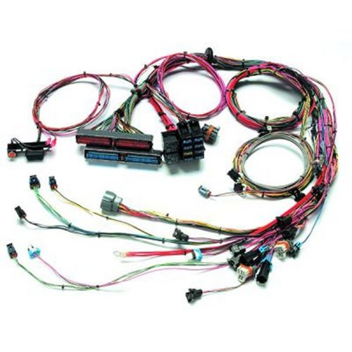 small resolution of painless wiring 60509 99 02 gm ls1 fuel inj wiring harness