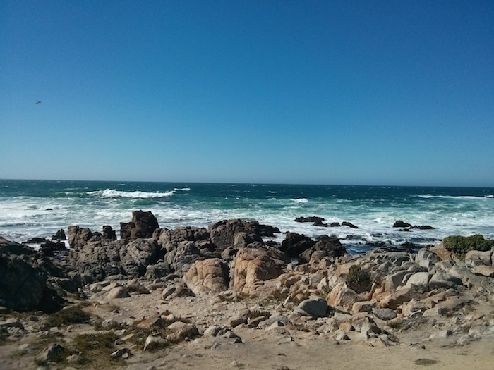 Pebble Beach, 17 Mile-Drive as one of the stops on our USA road trip