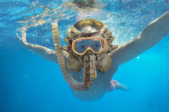 Alien Facehugger Snorkel Mask Because, Aliens Love The Sea? | SHOUTS