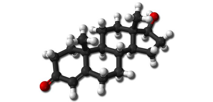 Methadone treatment suppresses testosterone in opioid addicts