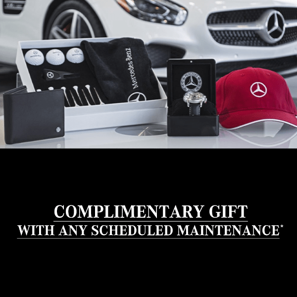 Gift With Maintenance