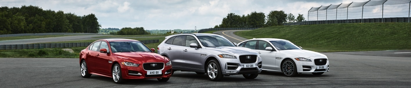 Jaguar Fleet