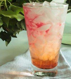 Sippable Seabreeze Drink | AllFreeDIYWeddings.com