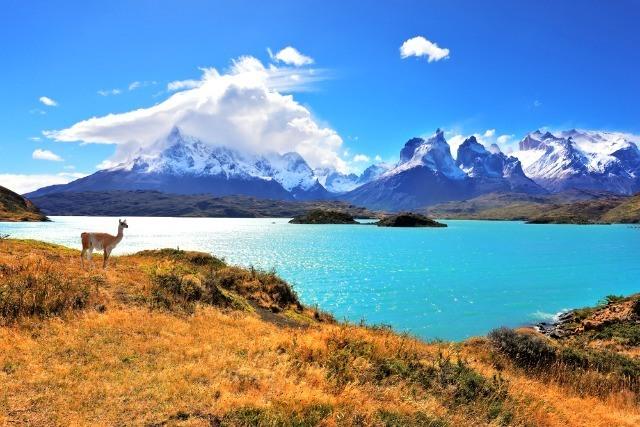Que voir en Patagonie ? Torres del Paine