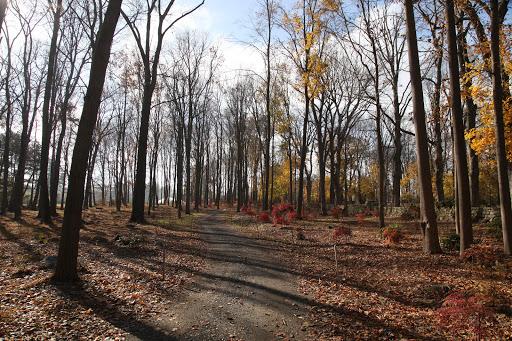 Mid-November Around the Farm - The Martha Stewart Blog