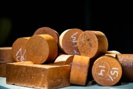 Recycling biosolids to make sustainable bricks