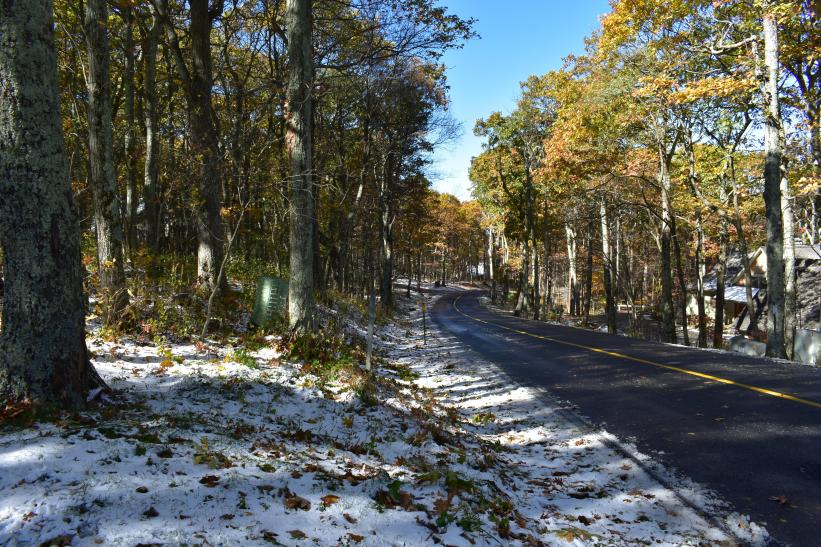 Across the road 1st snow November 2017