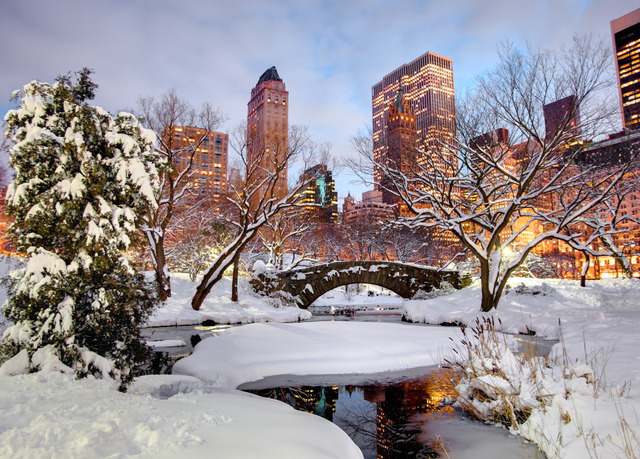 Stylish Luxury Hotel Near Central Park Save Up To 70 On