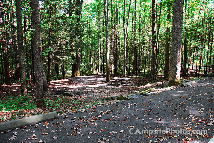 Great smoky mountains national park is. Cosby Campsite Photos Campsite Availability Alerts Camping Info