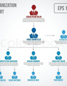 Organizational chart infographic business hierarchy boss to employee structure vector illustration stock colourbox also rh