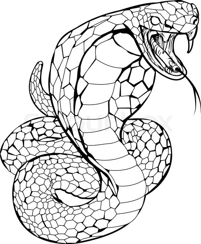 Black and white illustration of a cobra snake preparing to