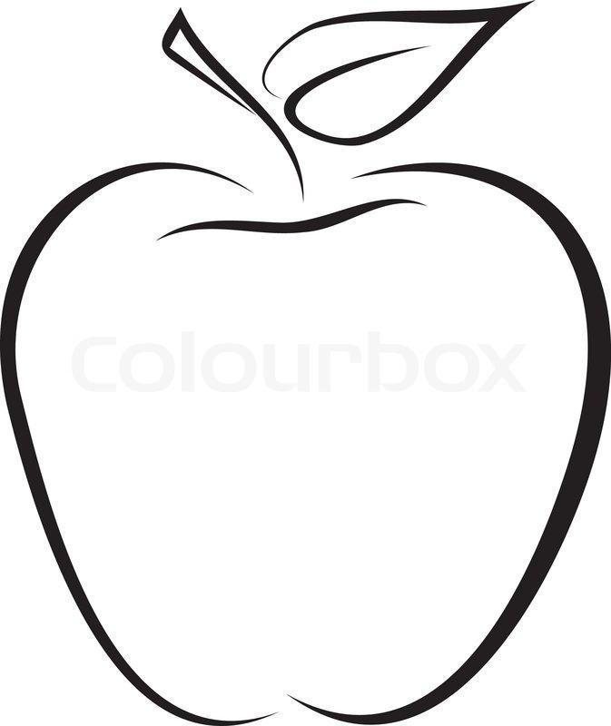 Artistic outline sketch of apple. Vector illustration