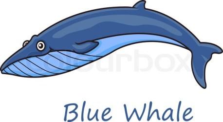 Funny cute cartoon blue whale isolated Stock vector Colourbox