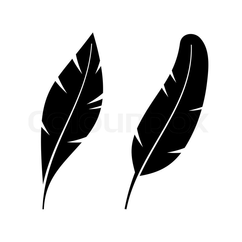 two icon style feathers