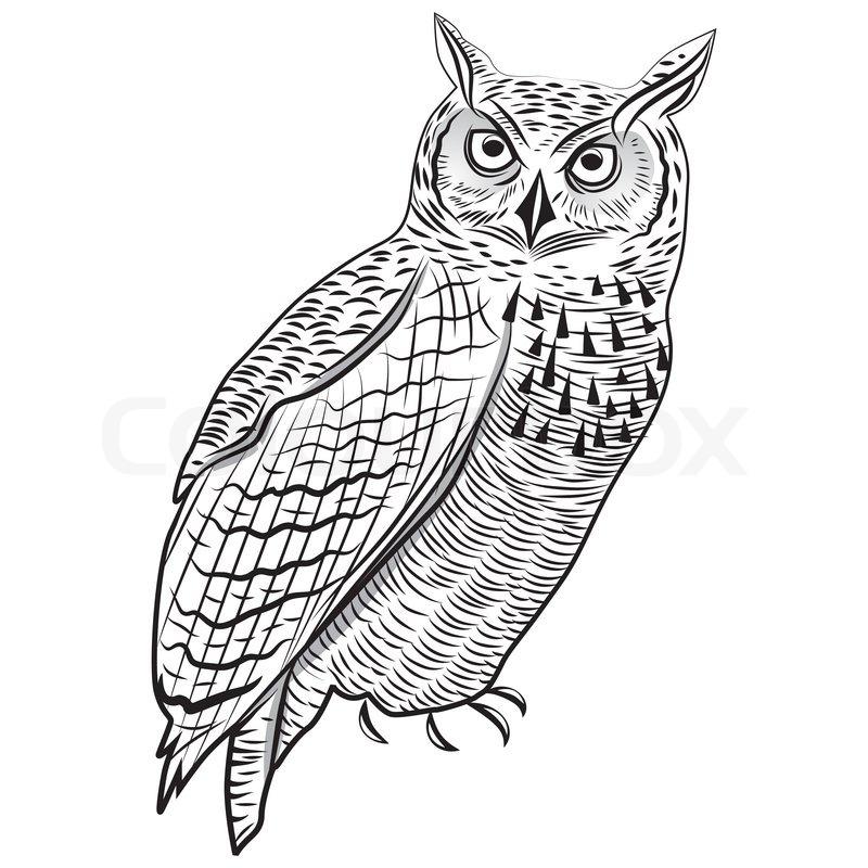 Owl Bird As Halloween Symbol For Mascot Or Emblem Design