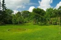 Lawn, nature, grass, garden, summer, day, blue, tree, pond ...