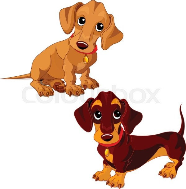 illustration of two cute dachshunds