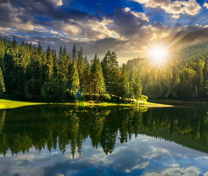 Fall Mountains In The Sun Wallpaper Lake Near The Pine Forest In Mountains Stock Photo