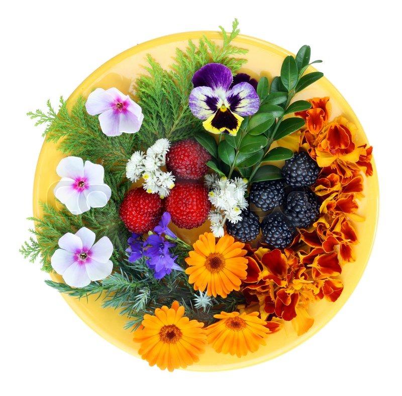 August Blumen und Beeren auf einem gelben Stockfoto
