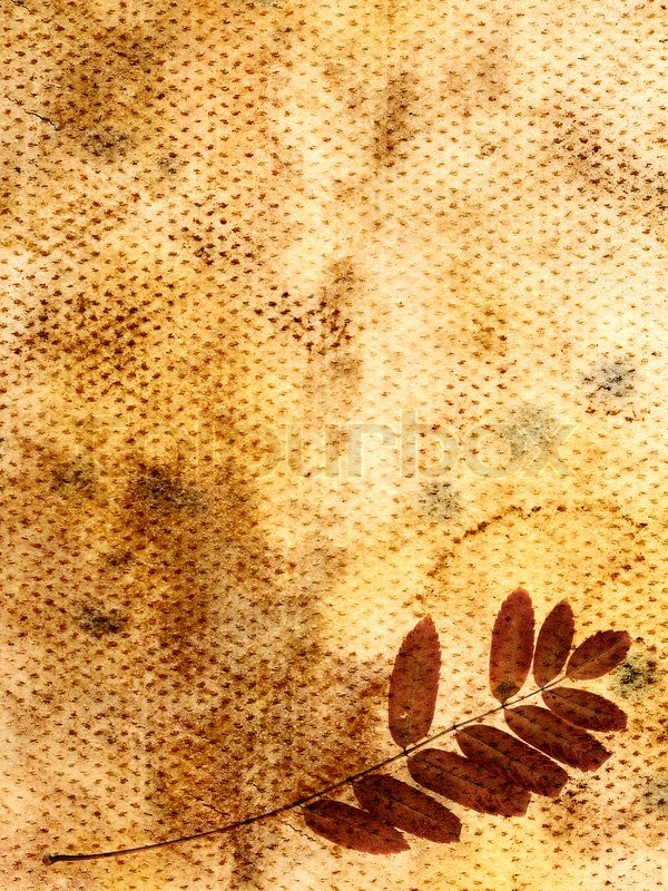 Free Fall Foliage Wallpaper Vintage Floral Background Dry Leaves Stock Photo