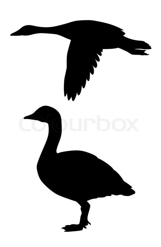 Goose Canadian Art Clip