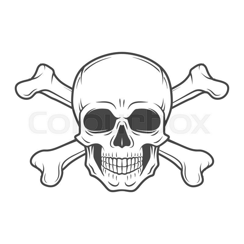 Human evil skull vector. Pirate insignia concept design