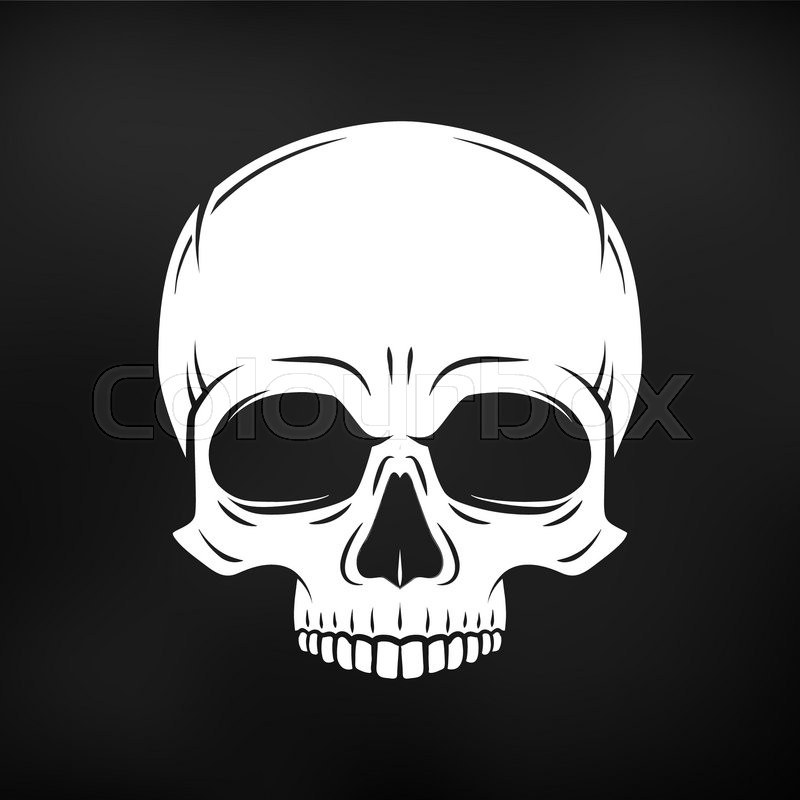 Human evil skull vector Jolly Roger   Stock Vector