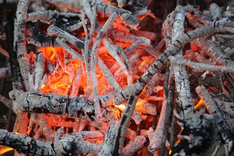 Best Burn Wood Fireplace