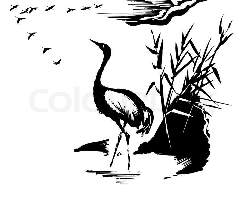 Vector illustration of the crane on white background